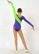 Трико гимнастическое Т1636, Одежда для выступлений, Одежда для гимнастики