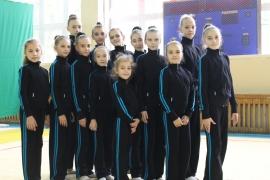 Тренировочная одежда для гимнастики