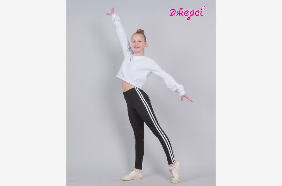 Лосины спортивные Л2023 Джемпер Д1955